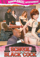 School Of Black Cock  Porn Movie