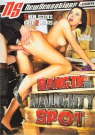 Bangin The Naughty Spot Porn Movie
